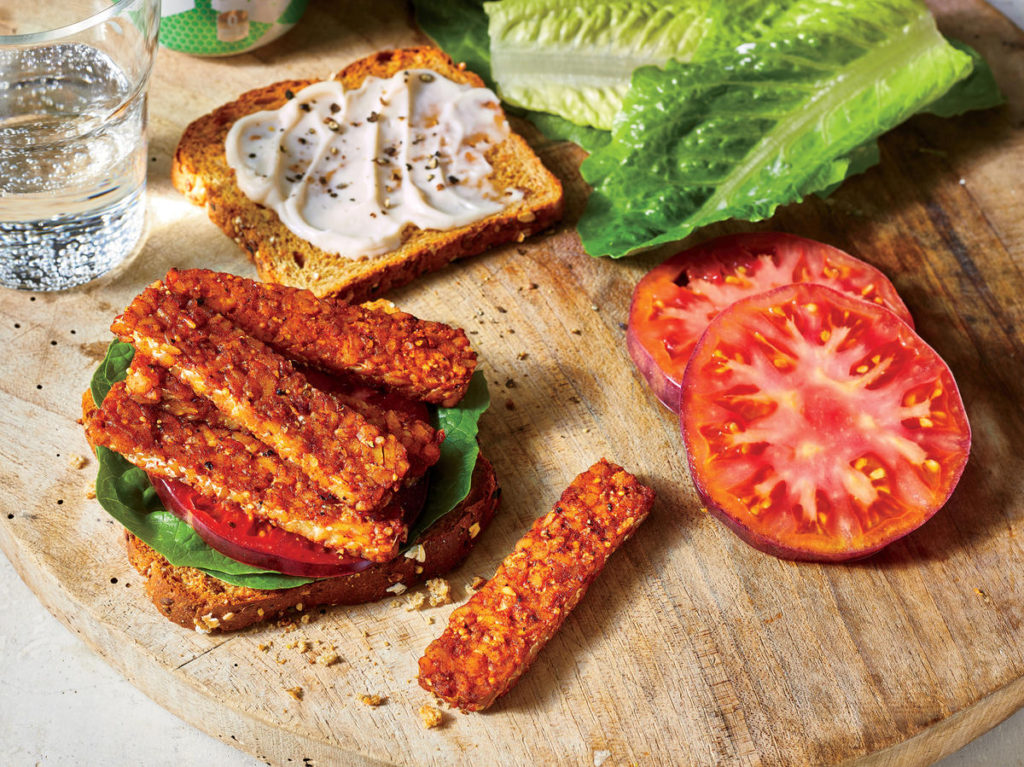 protein kids tempeh